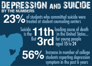 students suicides case study