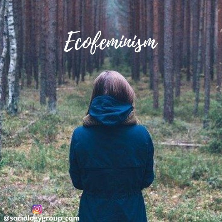 What is Ecofeminism