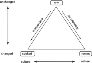 the culinary triangle: food