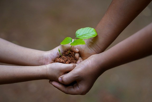 What is Environmental Psychology