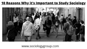 why is it important to study sociology explained reasons