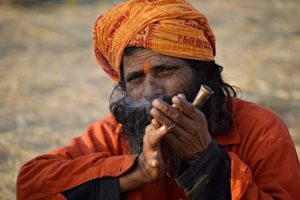 Castes in India: Their Mechanism, Genesis and Development summary