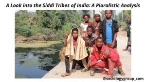 A Look into the Siddi Tribes of India: A Pluralistic Analysis